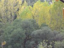 otoño en caceres