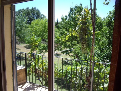 Vista al jardín verato