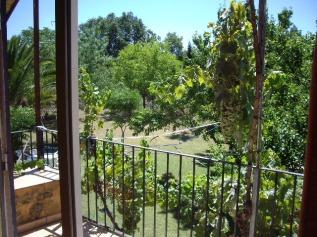 Naturaleza desde el alojamiento nº 2 de La Vera de caceres