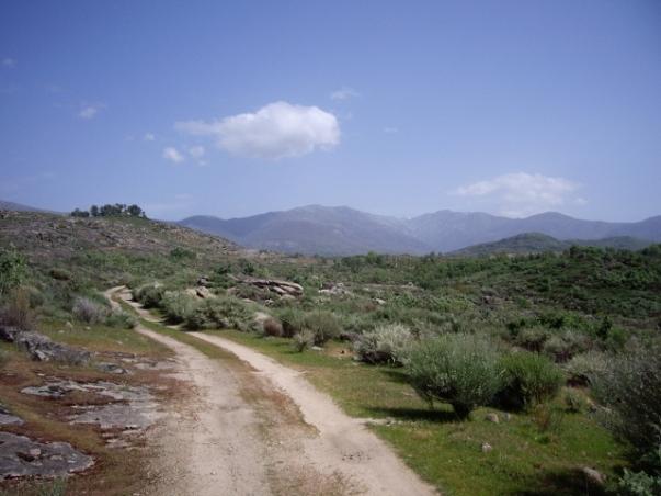 Camino a la casa rural (10) (640x480)