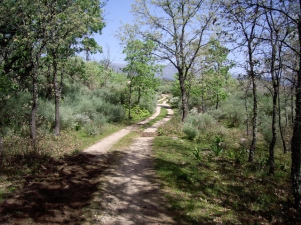 Camino a la casa rural (7) (640x480)