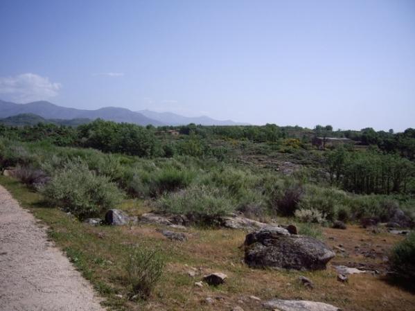 Camino a la casa rural (9) (640x480)